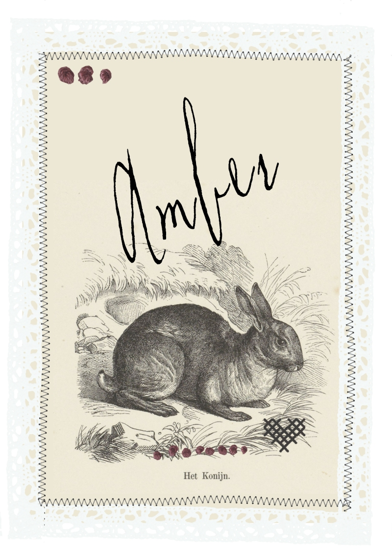 Amber Easter name card