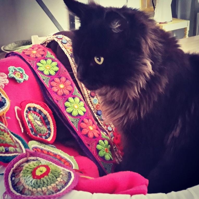 sassycat1